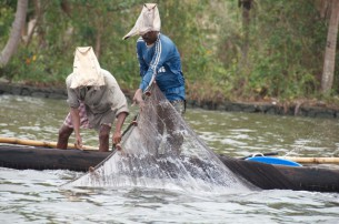 Prawn fisherman Lake Vembanad